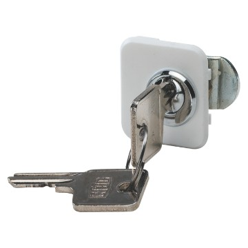 Security lock for enclosures for cavity walls