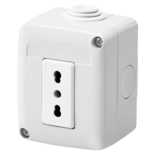 PROTECTED ENCLOSURE COMPLETE WITH SYSTEM DEVICES - WITH SOCKET-OUTLET 2P+E 16 A DUAL AMPERAGE - ITALIAN STANDARD - IP40 - GREY RAL 7035